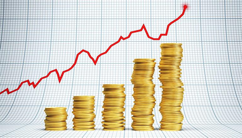 Investmentcrop.jpg