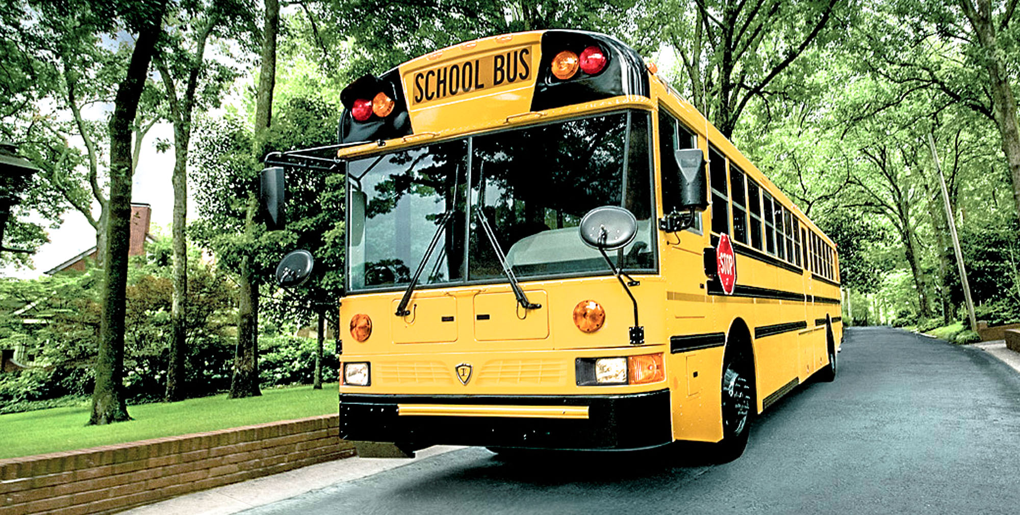 slideshow-schoolbus-type-d-re-in-neighborhood.jpg